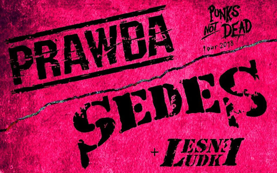 Za miesiąc (27.10.2018 r.) w Spichlerzu zagrają: Sedes / Prawda / Leśne Ludki!